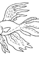 Coloriage Poisson Rigolo En Ligne Gratuit à Imprimer