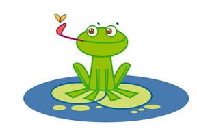 Apprendre à dessiner une grenouille
