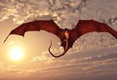 Tout savoir sur les dragons?