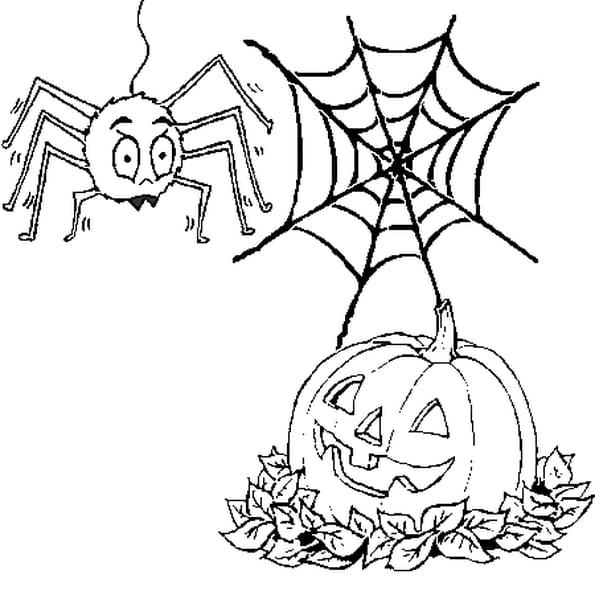 Coloriage Citrouille Et Araignée D Halloween En Ligne Gratuit à Imprimer