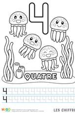 Chiffre4, les méduses