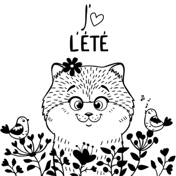 Coloriage chat et oiseau en ligne gratuit imprimer - Coloriage gratuit chat ...