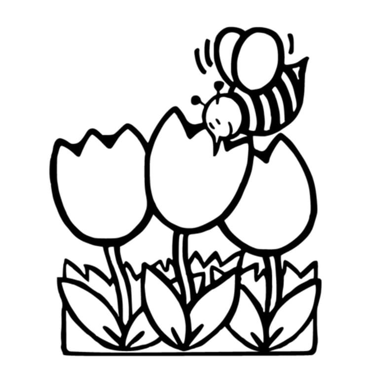 abeille et fleurs - Dessin Imprimer Animaux
