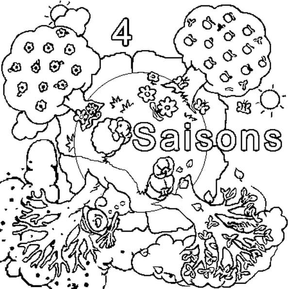 Coloriage Quatre Saisons en Ligne Gratuit à imprimer
