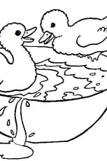 Coloriage petit canard en Ligne Gratuit à imprimer
