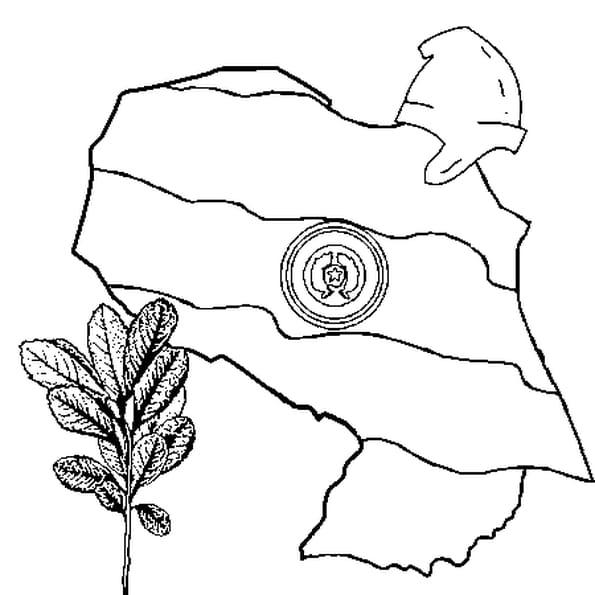Dessin Paraguay a colorier