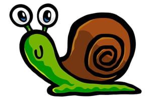 Monsieur l'escargot
