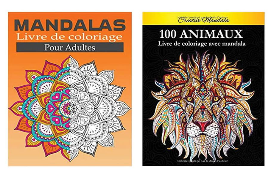 Cahier de coloriages pour adulte: notre sélection anti-stress