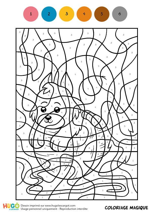 Coloriage magique cm1 un petit chaton joueur - Coloriage magique grammaire cm1 ...