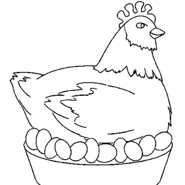 Poule en chocolat coloriage poule en chocolat en ligne - Dessin de poules ...