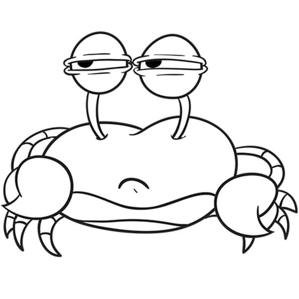 Dessin Crabe Dormeur a colorier