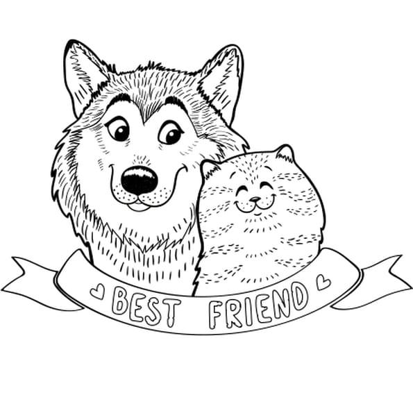 coloriage chien et chat en ligne gratuit imprimer - Coloriage Chien