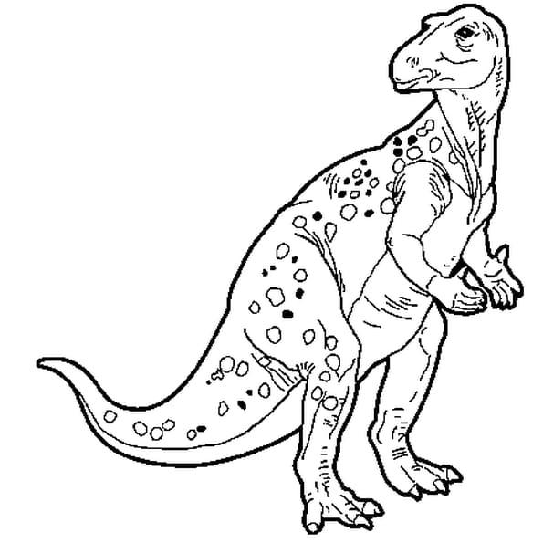 Coloriage Iguanodon en Ligne Gratuit à imprimer