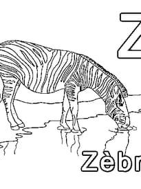 Z comme Zèbre