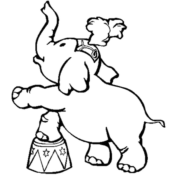 Coloriage Elephant De Cirque En Ligne Gratuit A Imprimer