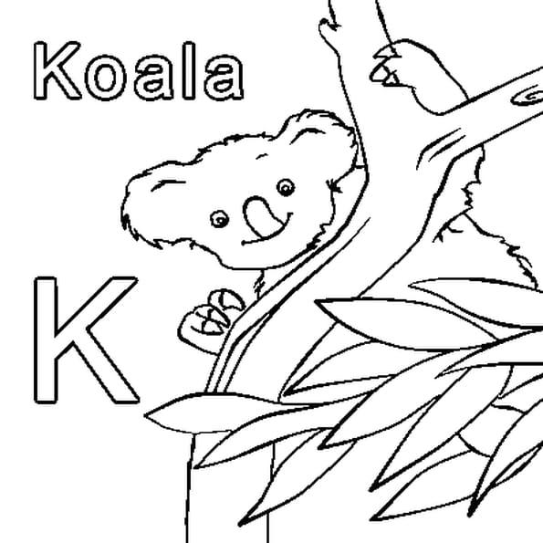 Dessin K comme Koala a colorier