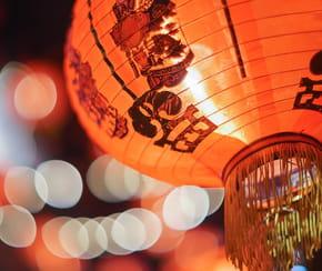 Quel est le signe astrologique chinois de l'année?