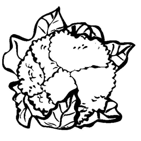 Coloriage Chou Fleur en Ligne Gratuit à imprimer