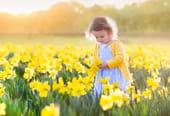 4saisons: les dates du printemps, été, automne, hiver