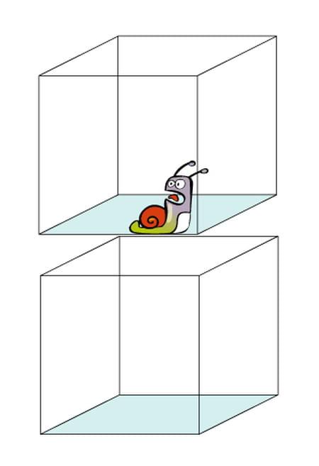 Les Illusions Doptique