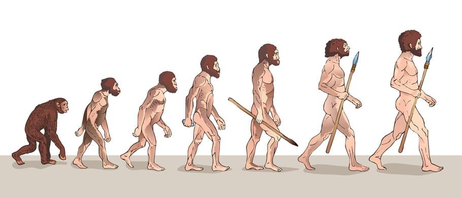 Homo sapiens: qui était l'homme de Cro-magnon?