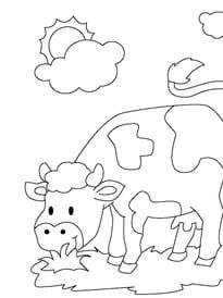 Coloriage Vache Sur Hugolescargot Com