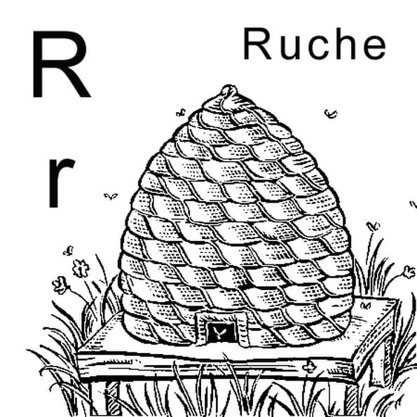 Dessin lettre R comme ruche a colorier