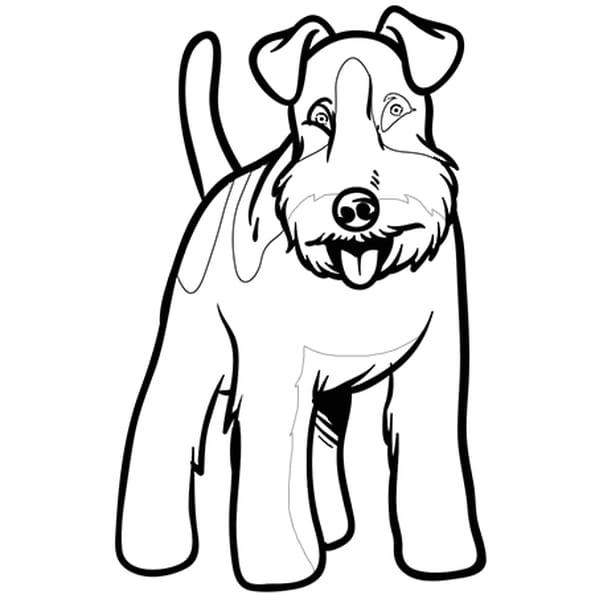 Dessin Chien Fox Terrier a colorier