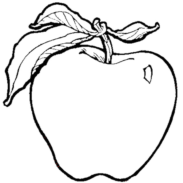 Coloriage Pomme Verte en Ligne Gratuit à imprimer