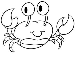 Crabe Rigolo