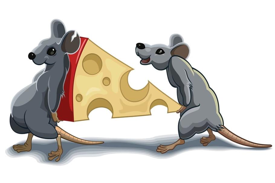 Comptine Les rats