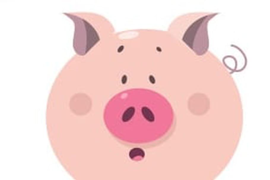 Dessiner Un Cochon