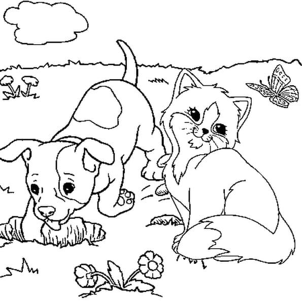 Chaton et chiot coloriage chaton et chiot en ligne gratuit a imprimer sur coloriage tv - Coloriage chiot ...