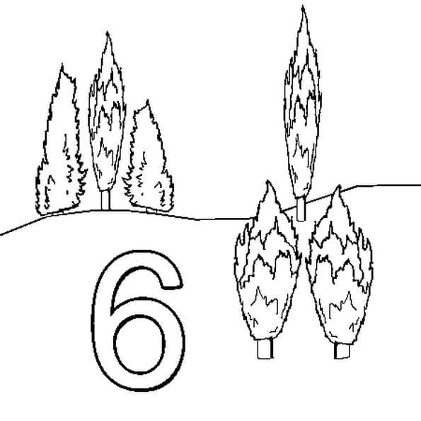 Dessin 6 Cyprès a colorier