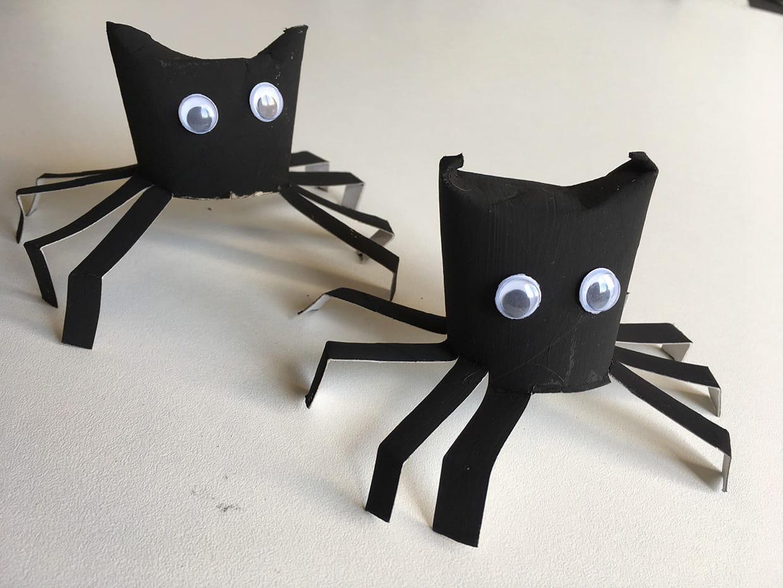 Araignée D Halloween En Rouleau De Papier Toilette Vidéo