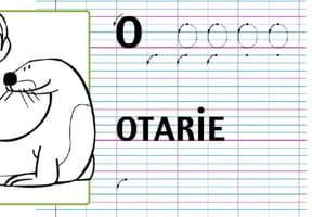 Lettre alphabet O, apprendre à écrire