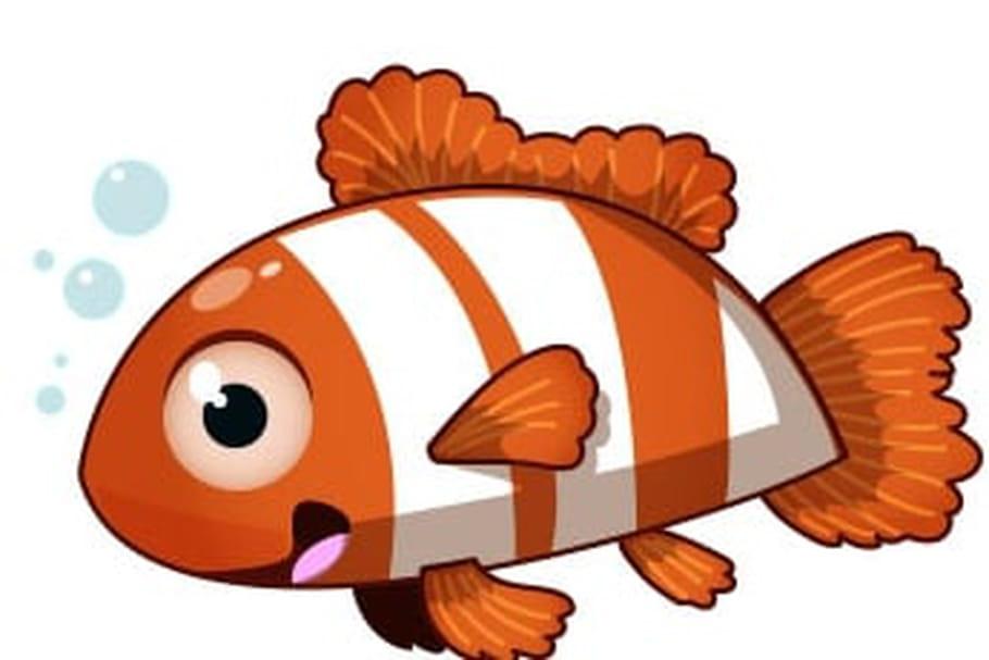 Dessiner un poisson - Poisson dessin couleur ...