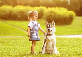 Maman, je veux un animal de compagnie!