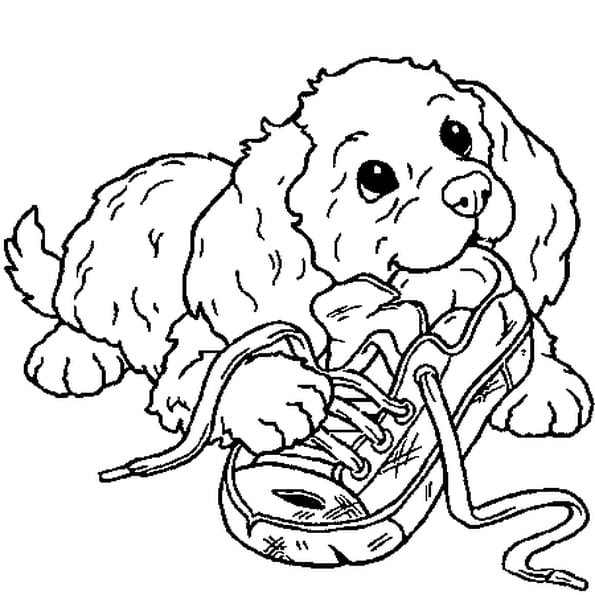 chiot coloriage