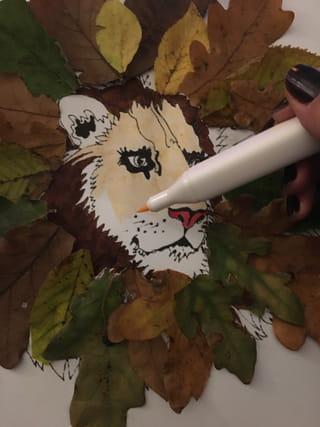Etape 4: colorier le visage du lion