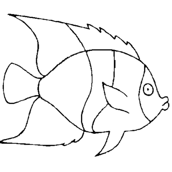 Dessin poisson avril 6 a colorier