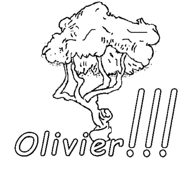 Dessin Olivier a colorier