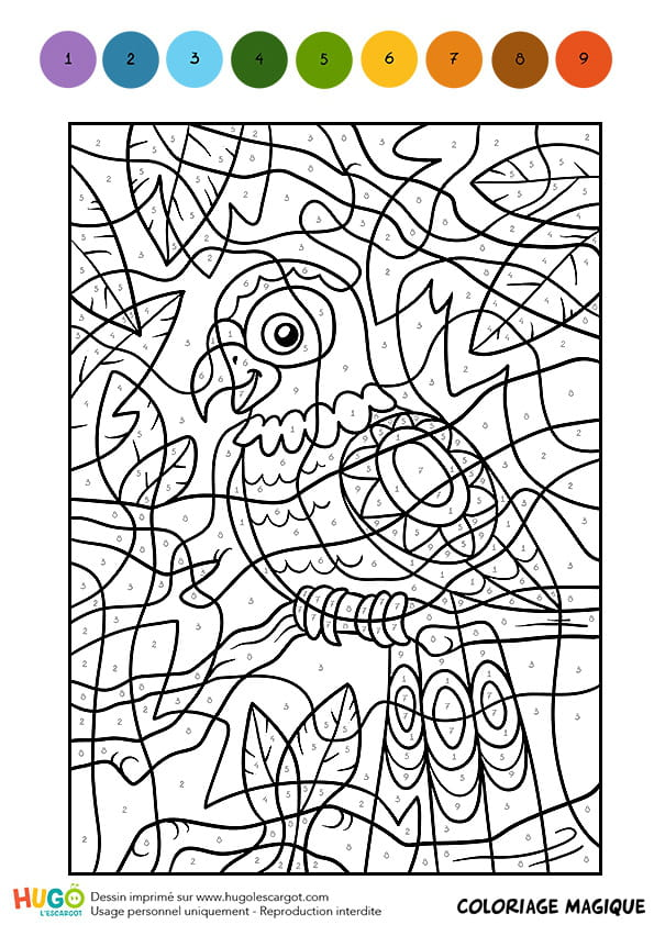 Coloriage magique cm1 une perruche multicolore - Coloriage magique grammaire cm1 ...