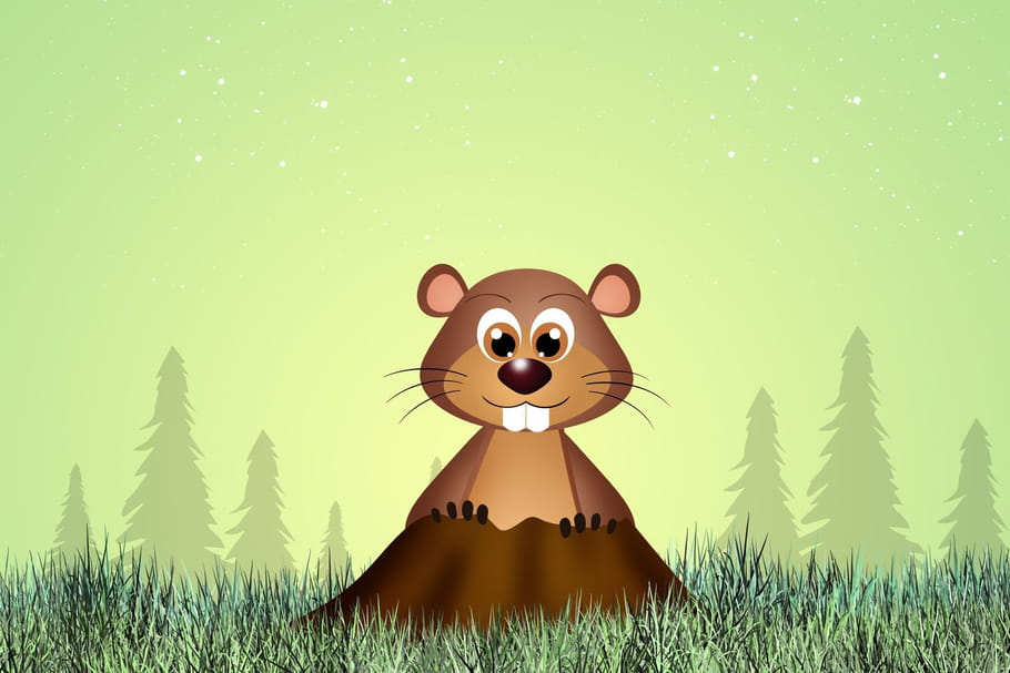 Comptine La marmotte