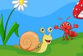Escargot, got, got