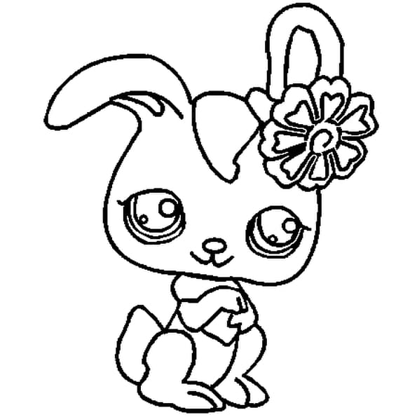 Coloriage pet shop kangourou en ligne gratuit imprimer - Coloriage pet shop ...