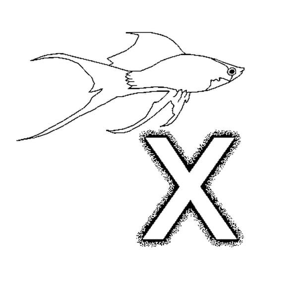 Lettre x coloriage lettre x en ligne gratuit a imprimer - Dessin lettre a ...