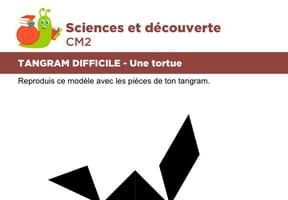 Le tangram niveau difficile, une tortue