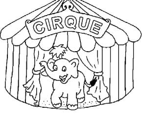 Du Cirque