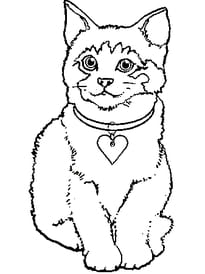 Coloriage Chat Joue.Coloriage Chaton Page 1
